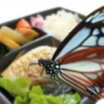 弁当に虫発見!ペヤングと日清食品でインスタント1個1000円時代『まるかリコール保険 危機管理』