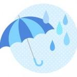 車内の傘置きに困ったら傘ホルダー|はっ水傘ポケット
