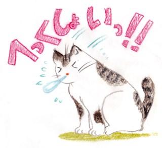 猫のくしゃみ