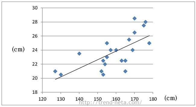 足と身長の関係