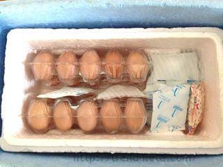 卵と保冷剤
