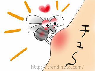 蚊に血を吸われる