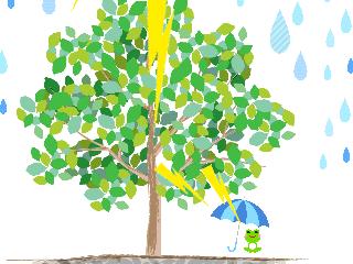 木の下で落雷