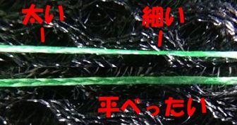 アバタのPEラインの形状