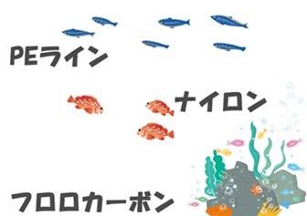 海底の様子