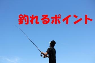 釣れるポイント