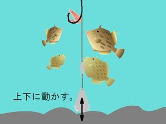 ウマヅラハギの釣り方