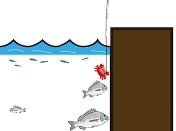 落とし込み釣り