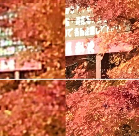kiyosato-akaihasi-hikaku02