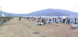 敦賀新港の釣り公園