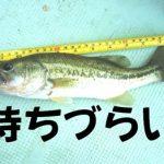 魚をつかむ道具【フィッシュキャッチャー】の高評価な商品を見つけた