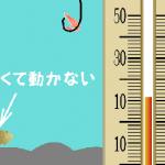 魚の活性を確認するなら水温計!釣り日記を始めると楽しい