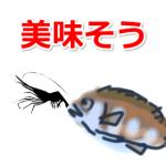 活きの良いモエビで爆釣!釣り用【電池式のエアーポンプ】選び方とおすすめ!