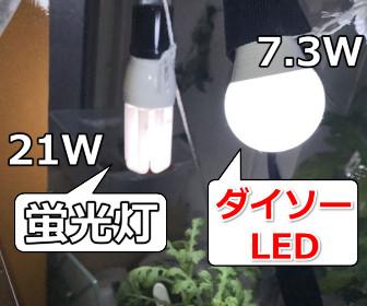 蛍光灯とLEDライト
