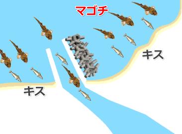 マゴチの釣りポイント