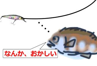 ワイヤに気づいた魚?