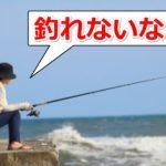 公開された釣りポイントは釣れなくなる?その原因を考えてみた