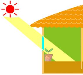 室内に差し込む太陽光
