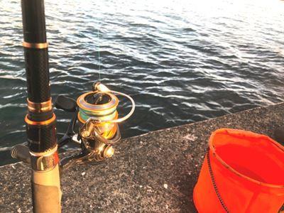 水くみバケツと竿