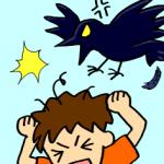 カラスに襲われそうになる!撃退する時は鳴き声にご用心!