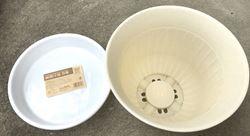 鉢と鉢受け皿