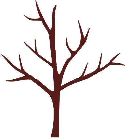 剪定後に大きくなった木
