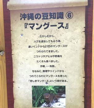マングースの豆知識