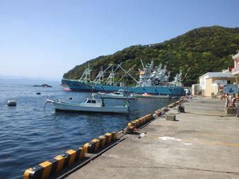港のポイント