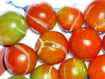 割れたミニトマト