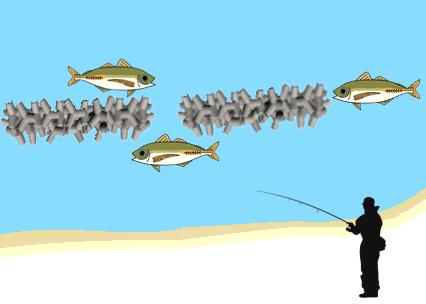あじの釣れるポイント