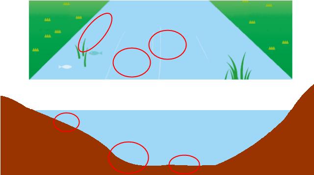 川のポイント