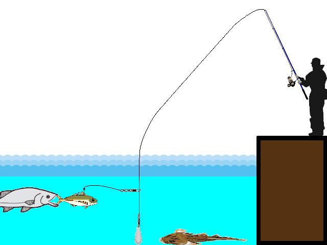 泳がせ釣りのイメージ